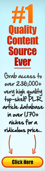 PLR Articles Package