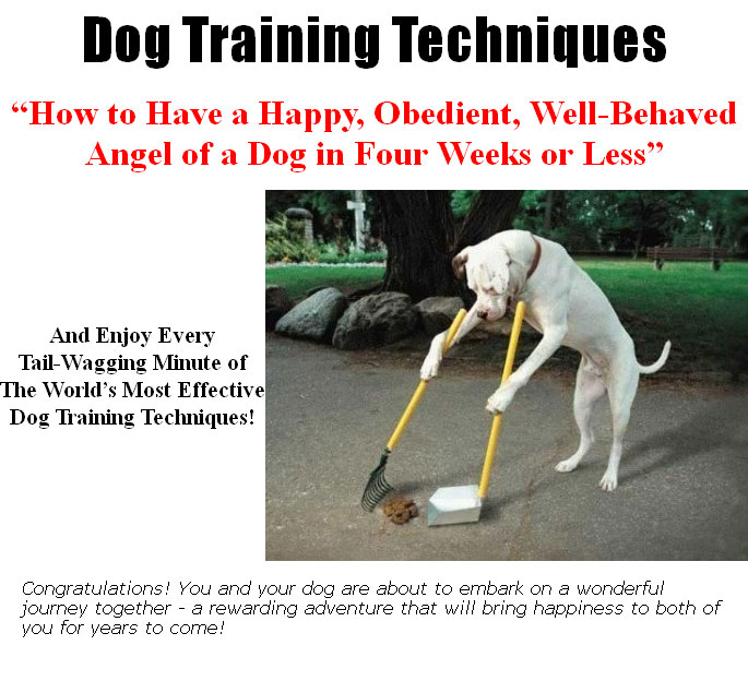 the loaded dog techniques Celebrity dog trainer and emmy-winning star of the cbs show lucky dog shares his lucky dog lessons: train your dog in 7 days and mastering training techniques.