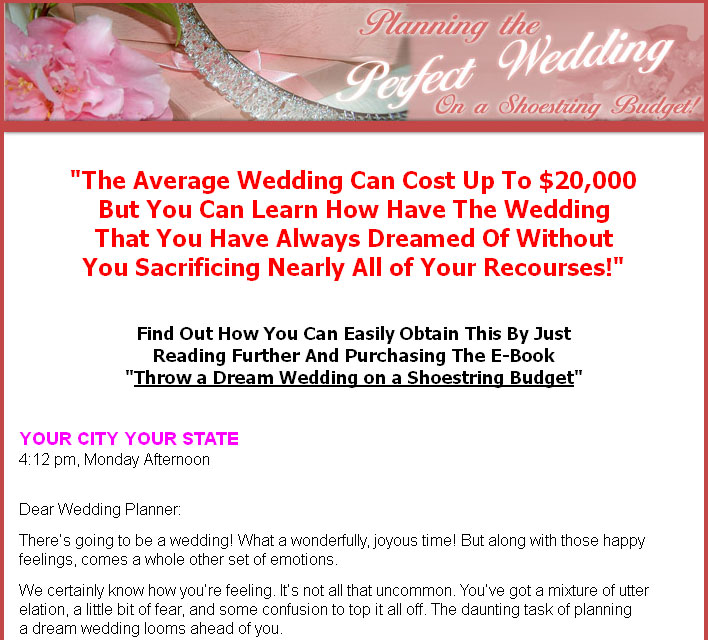 Planning A Wedding On A Budget: Planning The Perfect Wedding On A Shoestring Budget PLR Ebook